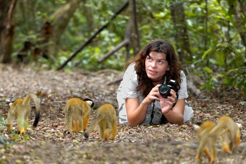 Freiwilligenarbeit mit Affen