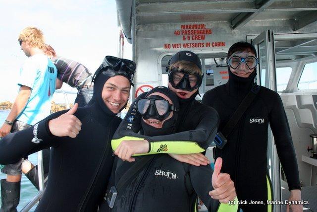 Freiwilligenarbeit Haischutz Südafrika