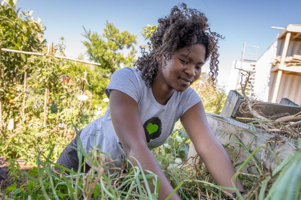 Freiwilligenarbeit Klimaschutz