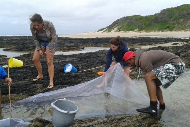Freiwilligenprojekt Meeresschutz Ausland