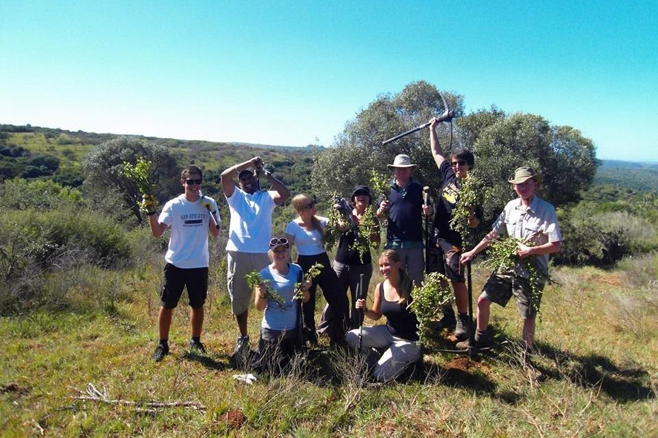 Freiwilligenarbeit Wildlifeschutz Südafrika